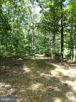 Photo of 14511 Antler ROAD, Fredericksburg, VA 22407 (MLS # VASP215548)