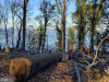 Photo of LOT 49 Osprey View Lane, Stafford, VA 22554 (MLS # VAST208746)