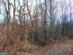 Photo of 0 Belle Plains, Fredericksburg, VA 22405 (MLS # VAST217092)