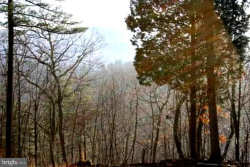 Photo of Lot 11 Fort Enochs Meadow ROAD, Bloomery, WV 26817 (MLS # WVHS105528)