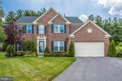 Photo of 217 Blanca COURT, Frederick, MD 21702 (MLS # 1000294320)