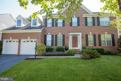 Photo of 25572 Quits Pond COURT, Chantilly, VA 20152 (MLS # 1000427586)
