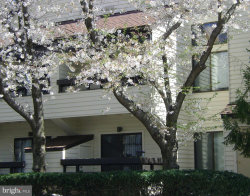Photo of 9700 Hellingly PLACE, Unit 216, Gaithersburg, MD 20886 (MLS # 1009918326)