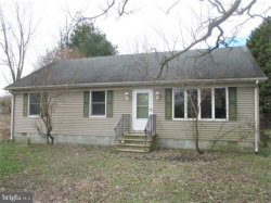 Photo of 21046 Francis Hearn DRIVE, Bridgeville, DE 19933 (MLS # DESU149754)
