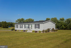 Photo of 26232 Route 313, Federalsburg, MD 21632 (MLS # MDCM122896)