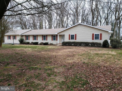 Photo of 10446 Orly DRIVE, Denton, MD 21629 (MLS # MDCM123464)