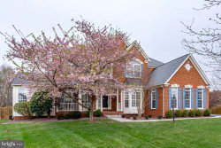 Photo of 22043 Water Run COURT, Ashburn, VA 20148 (MLS # VALO356610)