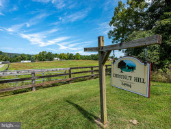 Photo of 34994 Williams Gap ROAD, Round Hill, VA 20141 (MLS # VALO400542)