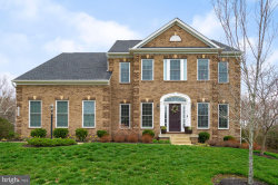 Photo of 42580 Fawn Meadow PLACE, Chantilly, VA 20152 (MLS # VALO405796)