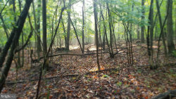 Photo of Chestnut Hill Dr, Harpers Ferry, WV 25425 (MLS # WVJF139034)