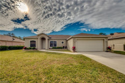 Photo of 2692 Nature Pointe LOOP, FORT MYERS, FL 33905 (MLS # 219005488)