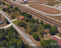 Photo of 3001 Tena N AVE, LEHIGH ACRES, FL 33971 (MLS # 219068386)