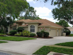 Photo of 17301 Carriage Way, ODESSA, FL 33556 (MLS # A4190127)