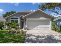 Photo of 12311 Glenfield Avenue, TAMPA, FL 33626 (MLS # A4194505)
