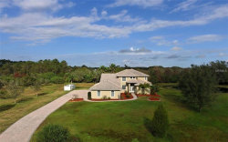Photo of 10311 Saddle Horse Drive, SARASOTA, FL 34241 (MLS # A4204576)