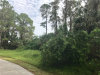 Photo of Campbell Street, NORTH PORT, FL 34288 (MLS # C7243602)