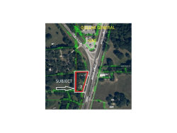 Photo of 20229 Us Highway 301, DADE CITY, FL 33523 (MLS # E2205548)