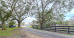 Photo of 6339 Griffin Road, BROOKSVILLE, FL 34601 (MLS # E2205649)