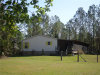 Photo of 340 Old Bubbly Road, PIERSON, FL 32180 (MLS # G4840648)