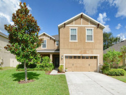 Photo of 30236 Cheval Street, MOUNT DORA, FL 32757 (MLS # G4848156)