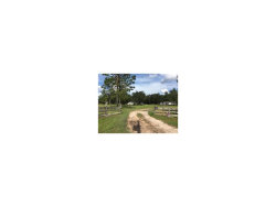 Photo of 6784 Green Swamp Road, CLERMONT, FL 34714 (MLS # G4850232)