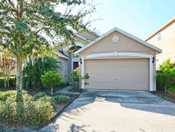 Photo of 2348 Sabastian Street, MOUNT DORA, FL 32757 (MLS # G4850344)