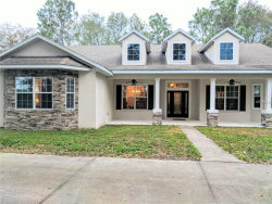 Photo of 11225 Dwights Rd, CLERMONT, FL 34714 (MLS # G4851644)