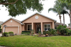 Photo of 10632 Masters Drive, CLERMONT, FL 34711 (MLS # G4854382)
