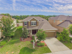 Photo of 22910 Wood Violet Court, LAND O LAKES, FL 34639 (MLS # H2204823)