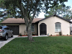 Photo of 3631 Gorman Drive, NEW PORT RICHEY, FL 34655 (MLS # N5913995)