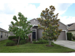 Photo of 4526 Northern Dancer Way, ORLANDO, FL 32826 (MLS # O5519514)