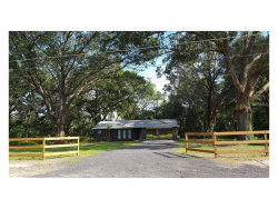 Photo of 534 Leverett Road, SEFFNER, FL 33584 (MLS # O5521061)
