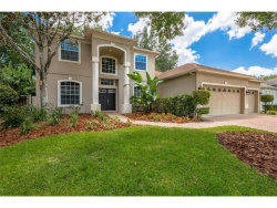 Photo of 4123 Lillian Hall Lane, ORLANDO, FL 32812 (MLS # O5531729)