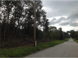 Photo of W Kicklighter Road, LAKE HELEN, FL 32744 (MLS # O5531947)
