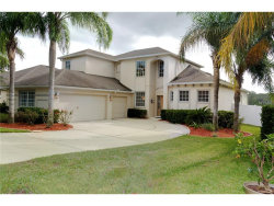 Photo of 5382 Rishley Run Way, MOUNT DORA, FL 32757 (MLS # O5539617)
