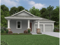 Photo of 15231 Honeybell Drive, WINTER GARDEN, FL 34787 (MLS # O5551208)