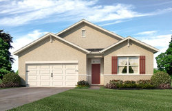 Photo of 1876 Hickory Bluff Road, KISSIMMEE, FL 34744 (MLS # O5552209)