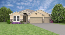 Photo of 1243 Grass Fern Lane, SANFORD, FL 32771 (MLS # O5557378)