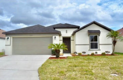 Photo of 1011 Elderberry Drive, DAVENPORT, FL 33897 (MLS # O5557886)