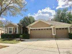 Photo of 27907 Summer Place Drive, WESLEY CHAPEL, FL 33544 (MLS # O5562284)