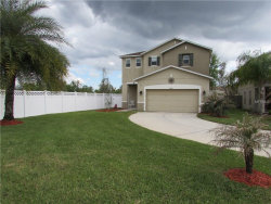 Photo of 18946 Parapet Place, LAND O LAKES, FL 34638 (MLS # O5569270)