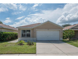 Photo of 11313 Palm Island Avenue, RIVERVIEW, FL 33569 (MLS # R4706754)
