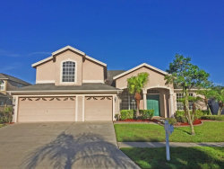 Photo of 10125 Londonshire Lane, TAMPA, FL 33647 (MLS # T2861523)