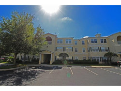 Photo of 18127 Back Stretch Lane, Unit 18127, TAMPA, FL 33647 (MLS # T2883833)