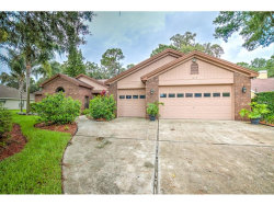 Photo of 3812 Northridge Drive, VALRICO, FL 33596 (MLS # T2886467)