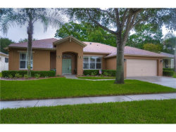Photo of 1148 Lumsden Trace Circle, VALRICO, FL 33594 (MLS # T2888429)