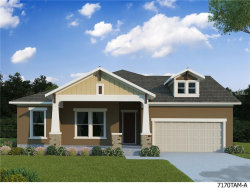Photo of 16807 Courtyard Loop, LAND O LAKES, FL 34638 (MLS # T2889299)