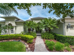 Photo of 3153 Sheehan Drive, LAND O LAKES, FL 34638 (MLS # T2889491)