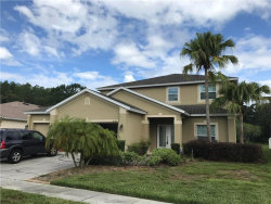 Photo of 6153 Everlasting Place, LAND O LAKES, FL 34639 (MLS # T2889570)