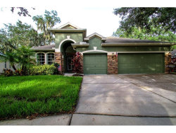 Photo of 6135 Whimbrelwood Drive, LITHIA, FL 33547 (MLS # T2893274)